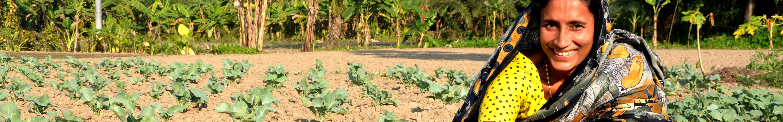 Farmer in Bangladesh