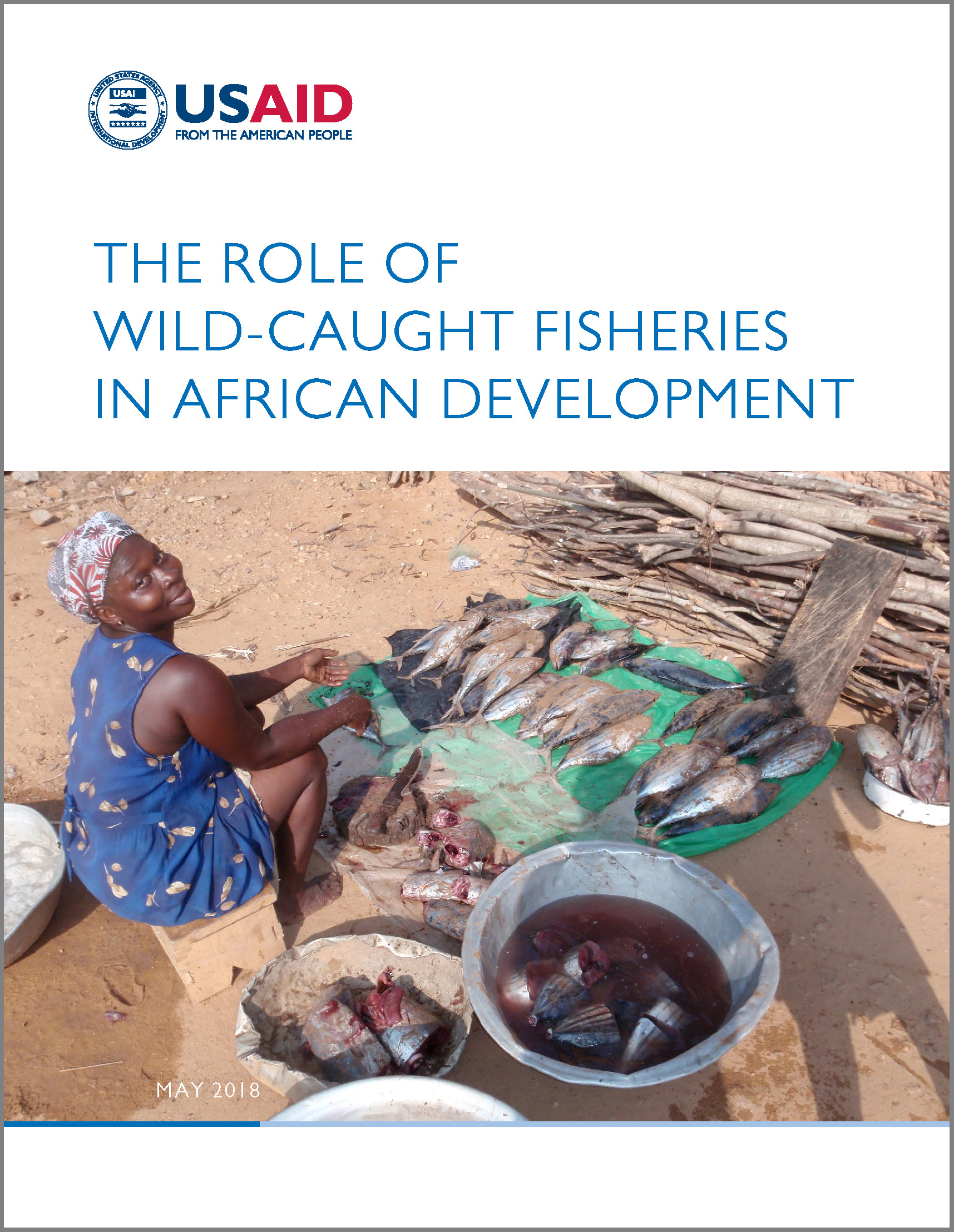 The Role of Wild-Caught Fisheries in African Development cover image