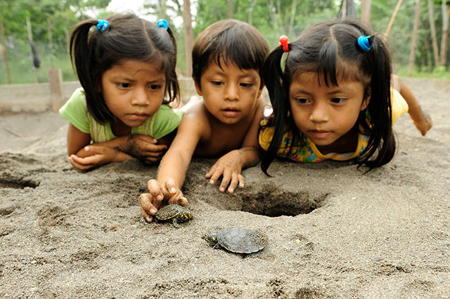 kids with turtle